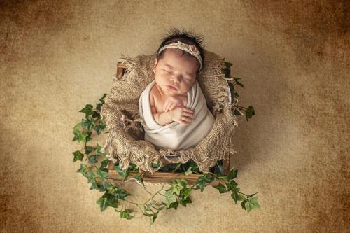 bébé photo angers